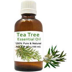 Breathtaking Gift of Organic Tea Tree Essential Oil