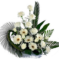 Beautiful Collection of Carnation N Gerberas Bouquet