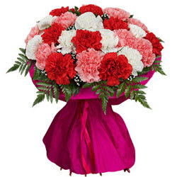 Colorful Blast Bouquet of Mixed Carnations