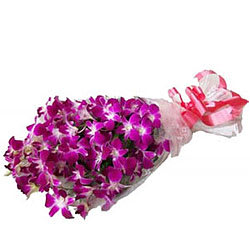 Exotic Blooms Purple Orchid Stems Bunch