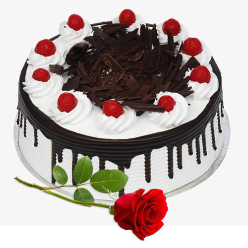 Lovely Red Rose with Eggless Black Forest Cake