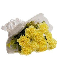 Stunning Yellow Carnations Bouquet
