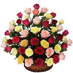 Delicate Selection of Mixed Roses in a Basket