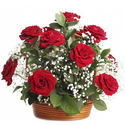 Fantastic Birthday Red Rose Arrangement