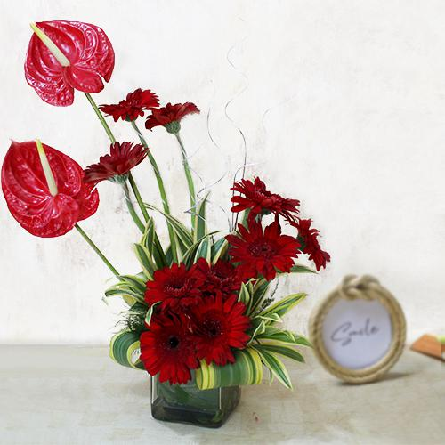 Marvelous Arrangement of Red Gerbera n Anthurium in Glass Vase