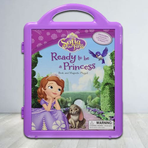 Disnesys Princes Sofia Story Book and Magnetic Play Set