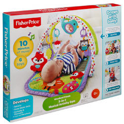 Fisher Price 3-in-1 Musical Activity Gym