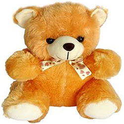 Soft and Cute Master Teddy Bear (12 inches)